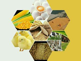 نمایشگاه تخصصی کشاورزی و صنایع وابسته